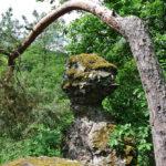 Jihomoravské bicyklení – Lubě s Krkatou bábou